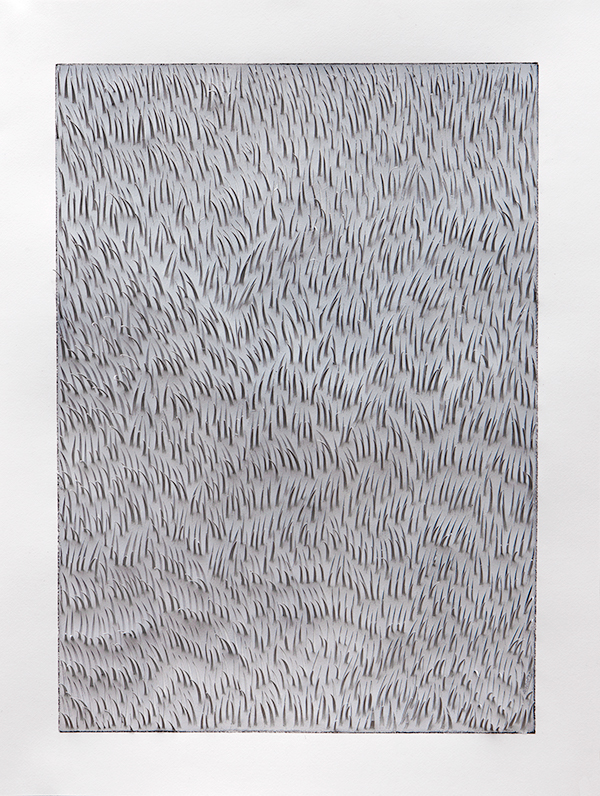 field grey grey